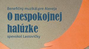 2.2.2020 BENEFIČNÝ MUZIKÁL PRE ALEXEJA