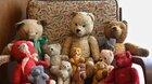 Medvěd, méďa, medvídek