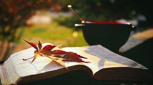 Co si přečíst v říjnu...