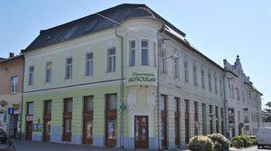 Borošov dom