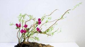 Japonská kaligrafie a ikebana