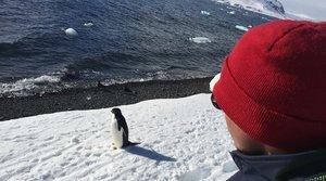 Úsmev na cestách: Antarktída