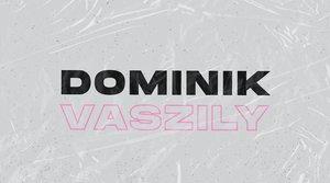 Koncert Dominik Vaszily